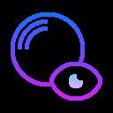 Show Geometry icon