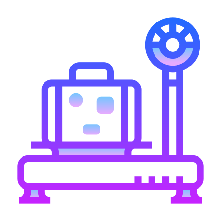Baggage Weight icon