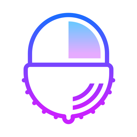Lychee icon