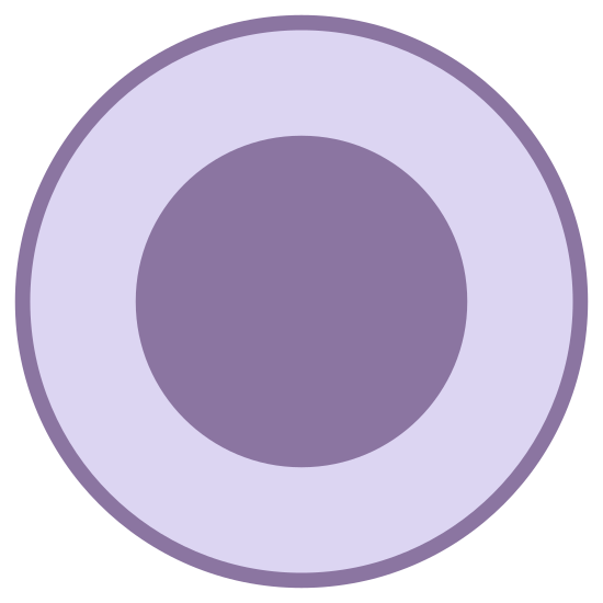 Final State icon. The icon consists of two lines. Both lines are drawn in circle form. The second line is drawn within the first line. looks somewhat like an eye without a pupil. both lines are close together