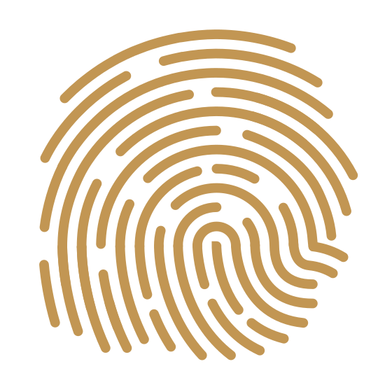 Fingerprint icon. This looks like a zoomed-in finger print. There are many lines that start in the bottom right, curving up and to the left, and then ending in the bottom left. There's many breaks in the lines.