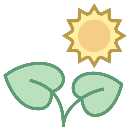 Plant icon. The icon is a representation of two plant leaves attached by a stem that is firmly anchored. Above it sits a circle representing the sung with triangular points radiating outward, indicating that sunlight is bathing the leaves.