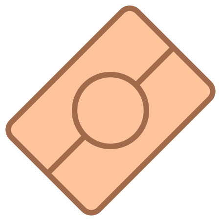 Biometric Passport icon