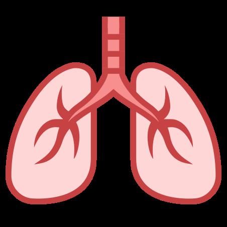 폐 icon