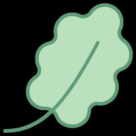 Oak Leaf icon in Office