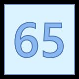 65 icon