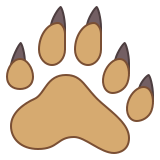 Empreinte d'ours icon