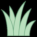 grass icon