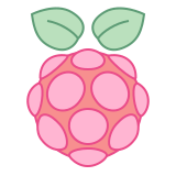 Raspberry Pi icon