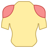 Spalle icon