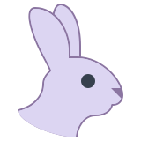 Year of Rabbit icon