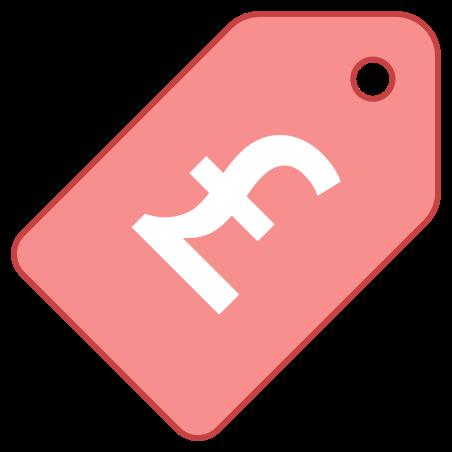 Price Tag Pound icon