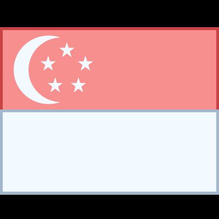 싱가포르 icon