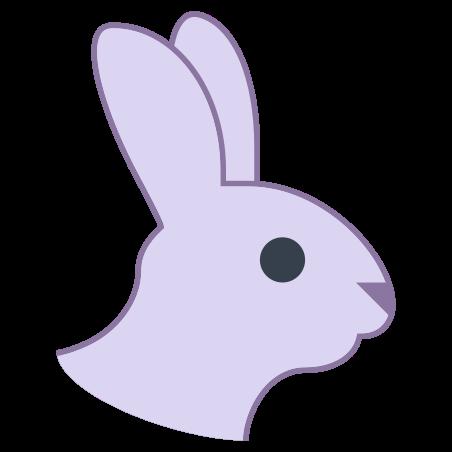 Year of Rabbit icon