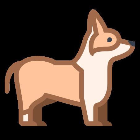 Corgi icon