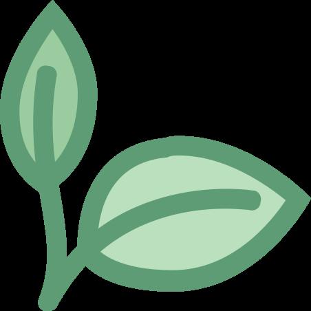 Natural Food icon