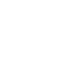 thermometer -v1 icon