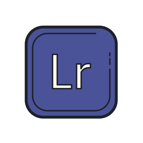 "Adobe Lightroom icon. This is a picture of a box. in the center of the box is the capital letter ""L"" and next to it, a lowercase letter ""r"". it seems to be an icon for a computer program from Adobe"