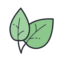 Natural Food icon