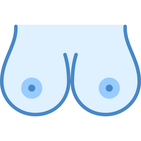 Seins icon. It is a pair of female breasts. They are nude with exposed, medium-sized circular nipples. The breasts are fairly large in size (probably a C cup) and are perfectly round at the bottom, just touching in the middle.