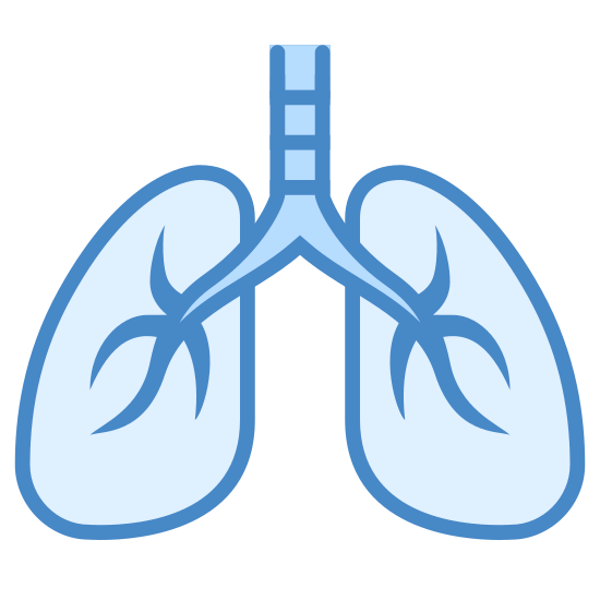 Lungs icon. This picture is of the icon Lungs. It shows two lungs, which are similar to an extended oval shape. The lungs are connected to the wind pipe which goes upward in between each lung.