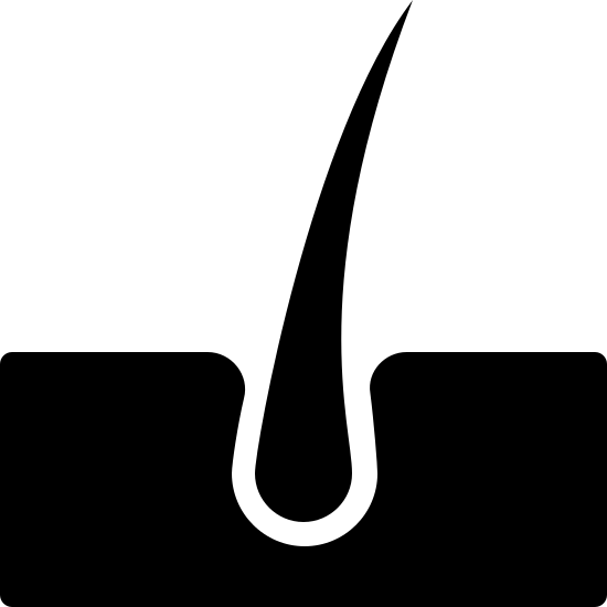 Skin Filled icon. The icon is a simplified depiction of a hair follicle embedded in skin, in profile. The hair is represented by a tear shaped figure whose point extends high up above the skin. The skin is a rectangular base with a concave opening where the hair follicle sits. The icon represents the human skin.
