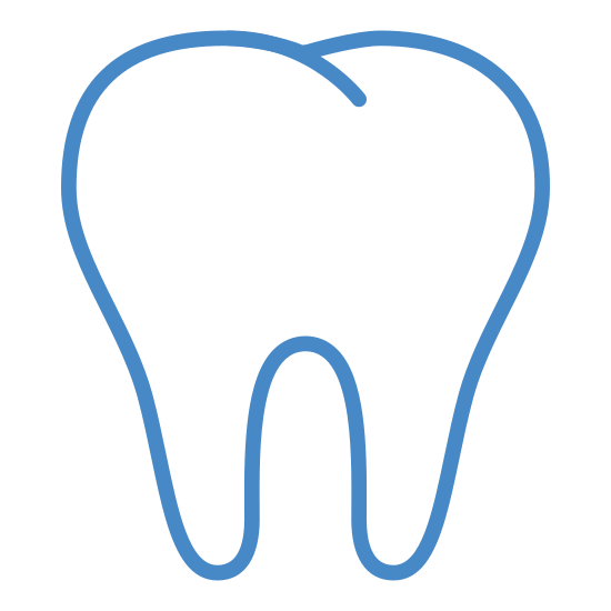 Tooth icon. It is an image of a tooth.  There are two medium length roots at the bottom, they are fairly symmetrical.  The top is rounded and divided into two bumps, with a short diagonal line in the middle to indicate the groove in the tooth.