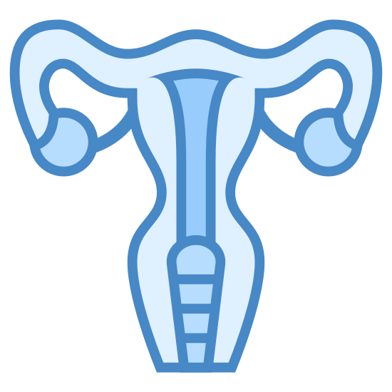 Uterus icon. This icon represents the uterus of a female human. There are fallopian tubes, the uterus, cervix, and vagina. It is Y shaped.