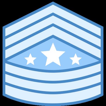 Сержант-майор сухопутных войск Армии США icon